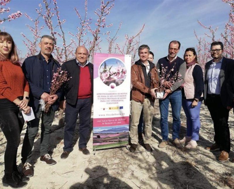 estospoda-un-proyecto-de-los-agricultores-de-cieza-que-transformara-los-sobrantes-de-la-agricultura-en-productos-comerciales-de-ornamentacion